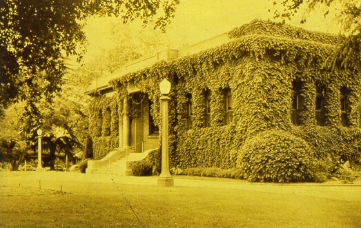 Carnegie Library with Ivy
