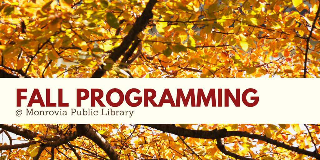 fall programming website