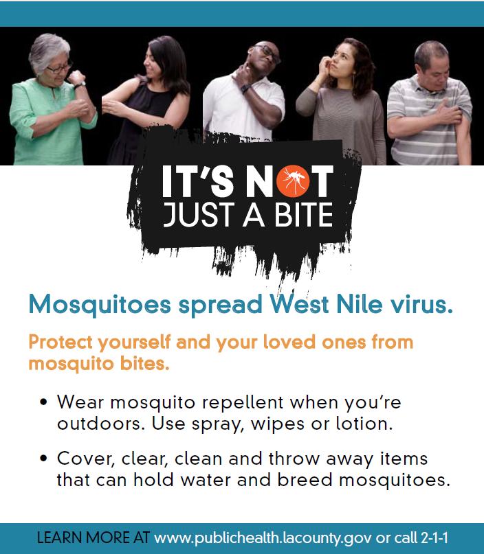 Mosquito Call 211